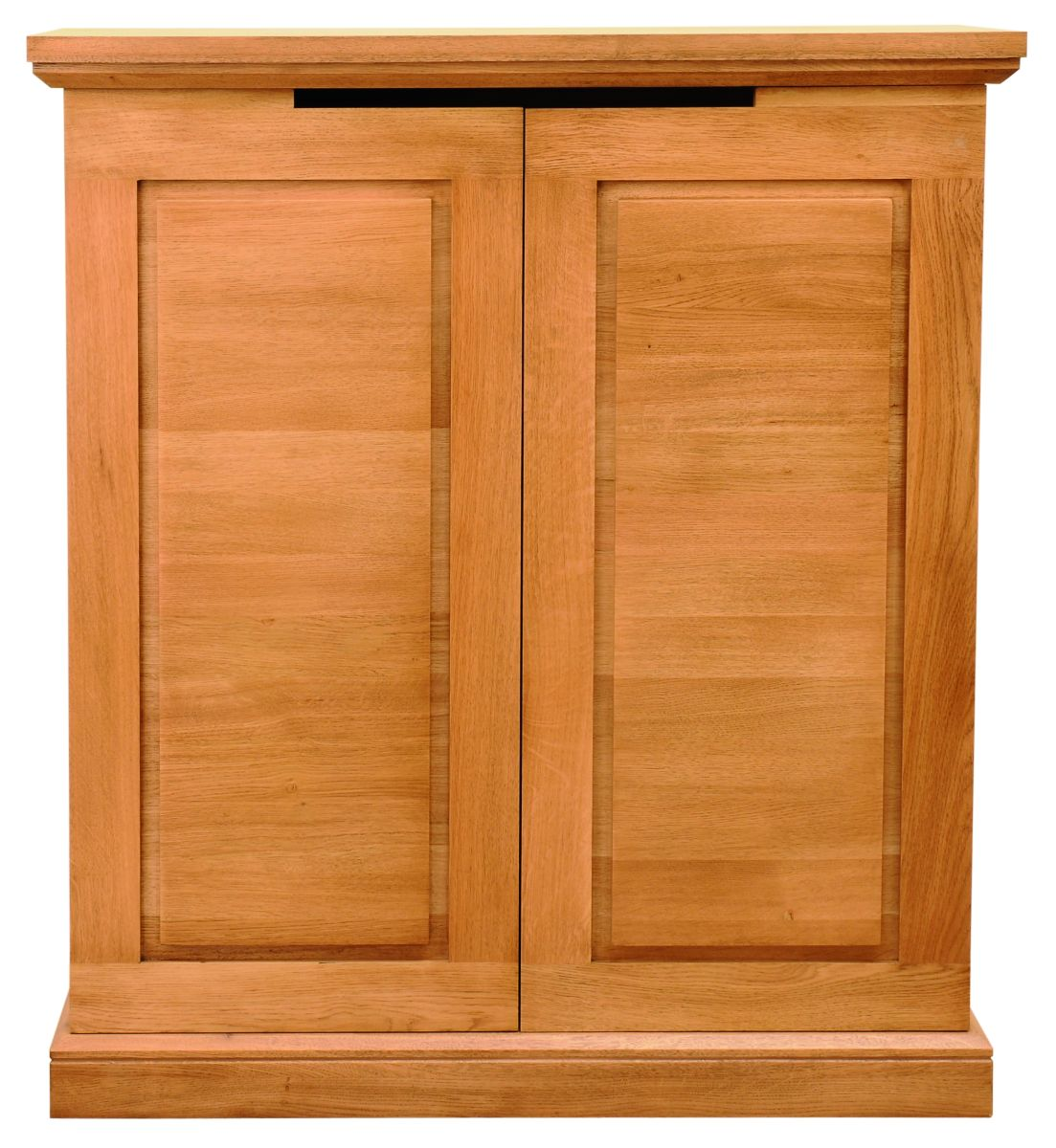 Solid Oak Storage Unit, 2 Doors